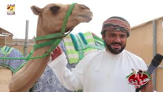 عزبة/ هلال بن عبدالله الحوسني