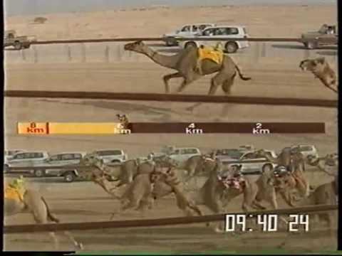 الدوحة لـ جارالله محمد طالب عقيل – مهرجان درهام التحدي 20/5/2009 – ثنايا بكار قبائل 13:09:13