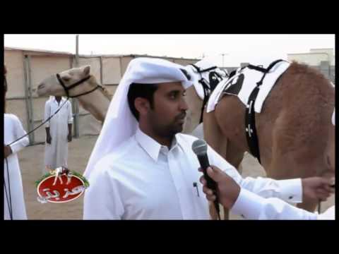 عزبة/ محمد راشد سلامه الهاجري