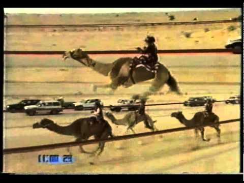 الواريه/ صاحب السمو الشيخ محمد بن راشد بن سعيد آل مكتوم ( الشلفة الذهبية للحيل ) درهام التحدي مفتوح -ت ٢٧-٤-٢٠٠٤ -ت ١٧:١٩:٠٠