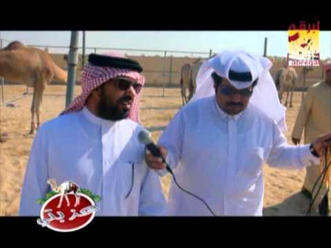 عزبة/ سيف بن محمد بن زايد الخيارين